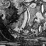 【ネタバレ】ローの恩人コラさんの正体がドフラミンゴの弟だった